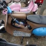 moto manoir ranléon 06 1013 107 (Copier)